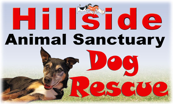 Cornwall Area Dog Rescue